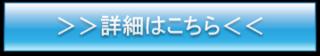 blue 詳細.png